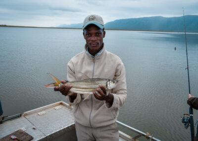 Yellow a Tiger Fish expedice